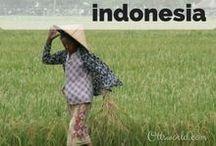 Destination: Indonesia / Destination: Travel to Indonesia