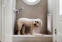 Pet Design / Designing For Pets  #IntDesignerChat   We share wise choices in furniture, fabrics, and flooring, and design that is both elegant and pet-friendly.