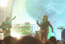 Festival Recaps (2011)