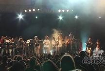 Festival Recaps (2008)
