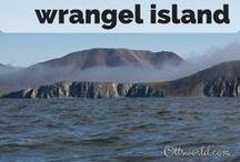 Wrangel Island, Russia / Wrangel Island, Russia