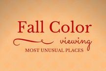 Autumn is Awesome! / A roundup of autumn and fall scenes an colors from around the world.