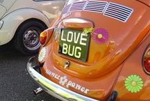VW Bug Fun