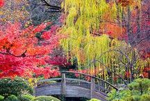 Remarkable Gardens / Remarkable gardens and garden features from around the world.