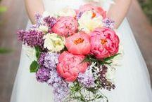 Flowers / by Kaysha Weiner Photographer