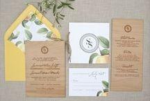 Paper Goods & Signage
