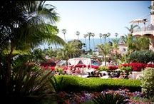 Wedding Venues / My favorite wedding venues in Southern California. / by Kaysha Weiner Photographer
