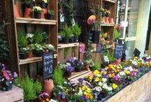The Garden Shoppe / Beautiful garden shoppe spaces...
