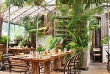 Garden Cafe / Gardens + Coffee = Amazing!