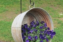 outdoors/gardening / outdoor ideas / by Pat Morse