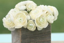 Shabby chic inspiration - Ashley Douglass Events
