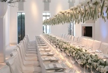 Shades of white - Ashley Douglass Events