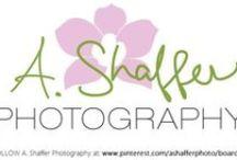A. Shaffer Photography / www.ashafferphotography.com #photographs #photos #ideas #newborn #wedding #engagement #ClearwaterBeach #family #portraits #love / by Amber Shaffer