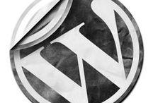 WordPress 411
