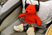 Teddy Trotter / Teddy is on holiday! Follow him through his exciting trips in iconic cities of the world...