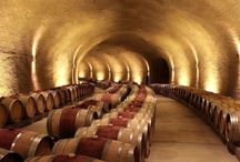 My Favorite Wines and Wine Places
