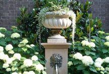 Gardening (part 2) / by Rhonda Powell