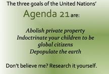 United Nations / by Carolynn S. Williams