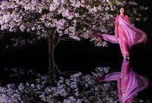 Japanese Garden ⊰✿ / by Kari Meijers