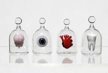 Boîtes, vitrines, globes et assemblages