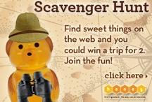 The Great Honey Hunt