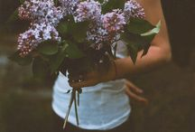 Garden / Flora  / by Shannon Wright