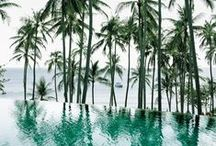 Gardens and Pools / Gardens, Parks, Woods: Vegetation and Waters