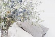 Blumendeko / Blumen in der Wohnung. Egal ob Sträuße, Topfpflanzen, Palmen oder Kakteen. Grün ist king.