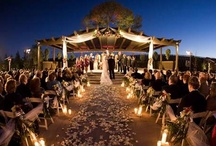 Weddings @ Winelands of South Africa / The beautiful Winelands of South Africa, the perfect location for a unforgettable wedding.