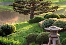 Asian styles:  Gardens / by Monette McNaughton