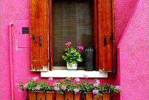 Doors & Window