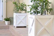 Home - Garten