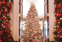 Christmas Decorations / by Jordan Donaldson