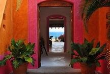 Mediterranean Gardens & Lifestyle