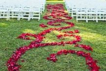 wedding ideas for my girls / A place to pin ideas to share. / by Dawana Cemer