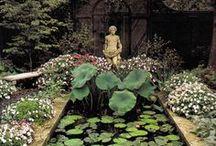 Jardins extraordinaires / Gardens / by Johanna Dunn