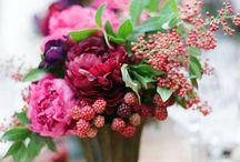 Флористика / Цветы