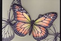 A Butterfly Cards / by Beverley Berthold