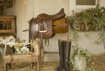My ideal tack room / equestrian equipment and clothing