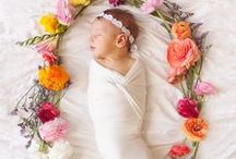 Baby {Photography} / by Sydni Hersch