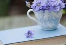 Wildflowers & Herbs / by Marsha A. Moore