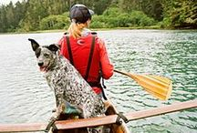 Vacations with Your Dog / You can take your best pal with you on these getaways around the West / by Sunset Magazine
