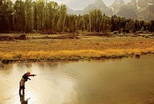Fall Trips / Explore the West's beaches, back roads, vineyards, and amazing open spaces / by Sunset Magazine
