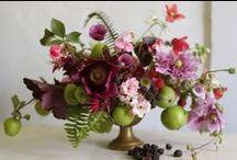 florals / by Morgan Aiello