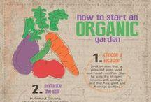 Organic Gardening / Share ideas for #organic #gardening
