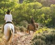Explore the Western Outdoors / The very best ways to explore the Western outdoors