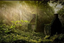 Favorite Spaces & Magical Places / (¯`·._.• Little nooks in nature...and other magical, whimsical places and spaces... •._.·´¯)