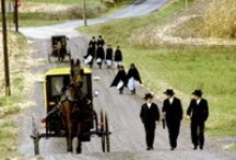 Amish Images / by Danice Gentle