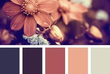 Color schemes / by Stacy Kirtley