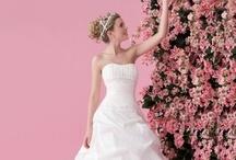 Wedding / by Melissa Kujat